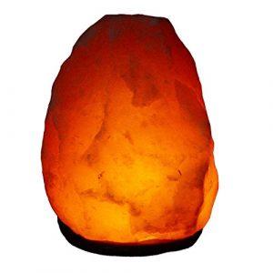 Salz Lampe von 2 kg bis 26 kg frei wählbar Kristall Lampen südlich vom Himalaya mit Spezial Leuchtmittel (4 – 6 kg)