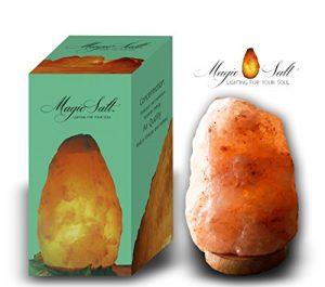 Salz Lampe mit Garantie Zertifikat; Himalaya Rock Salz; 4-6 kg