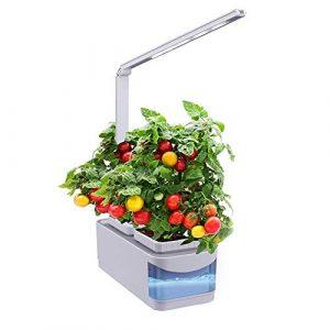 DAKANG Indoor Kräutergarten, Hydroponics Growing System, Auto Sensor Timer Gardening Kit mit Grow Light 360 verstellbare Schreibtischlampe, Mama, Oma und Kinder