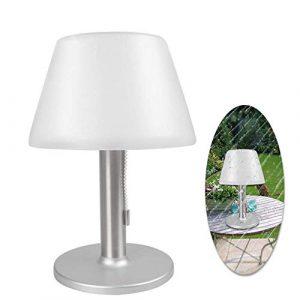 paletur88 LED Solar Tischlampe, 10 LED`S Wasserdicht Outdoor Garten Solar Licht Weiß 6500K Tischlampe, Edelstahl Nachtlicht für Bettseitig, Schlafzimmer, Wohnzimmer, Essen – Silbern, Free Size