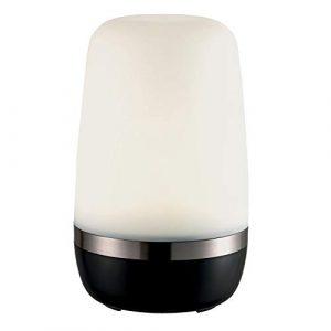 EPOS Indoor Outdoor LED-Leuchte 25 cm h, 14 cm Ø, aufladbar für Camping Boot Terrasse