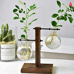 Abracing Tisch Schreibtischlampe Glas Hydrokultur Vase Blume Blumentopf mit Holzschale Büro Dekor